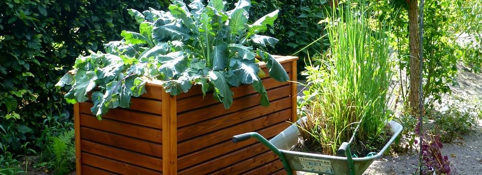 Gartenhochbeet