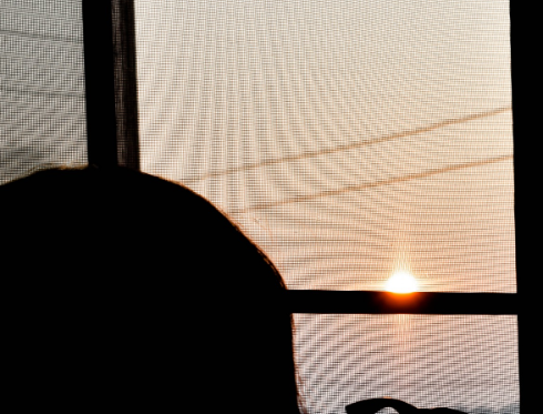 UV Schutzfolie Fenster